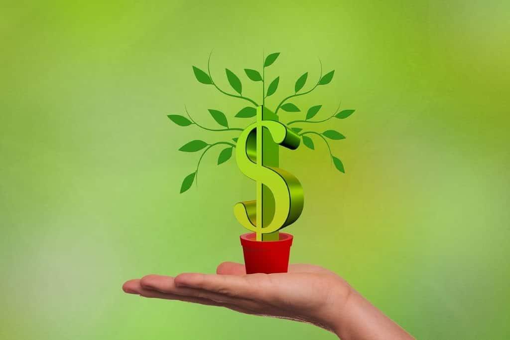 Money Growing in Pot Graphic