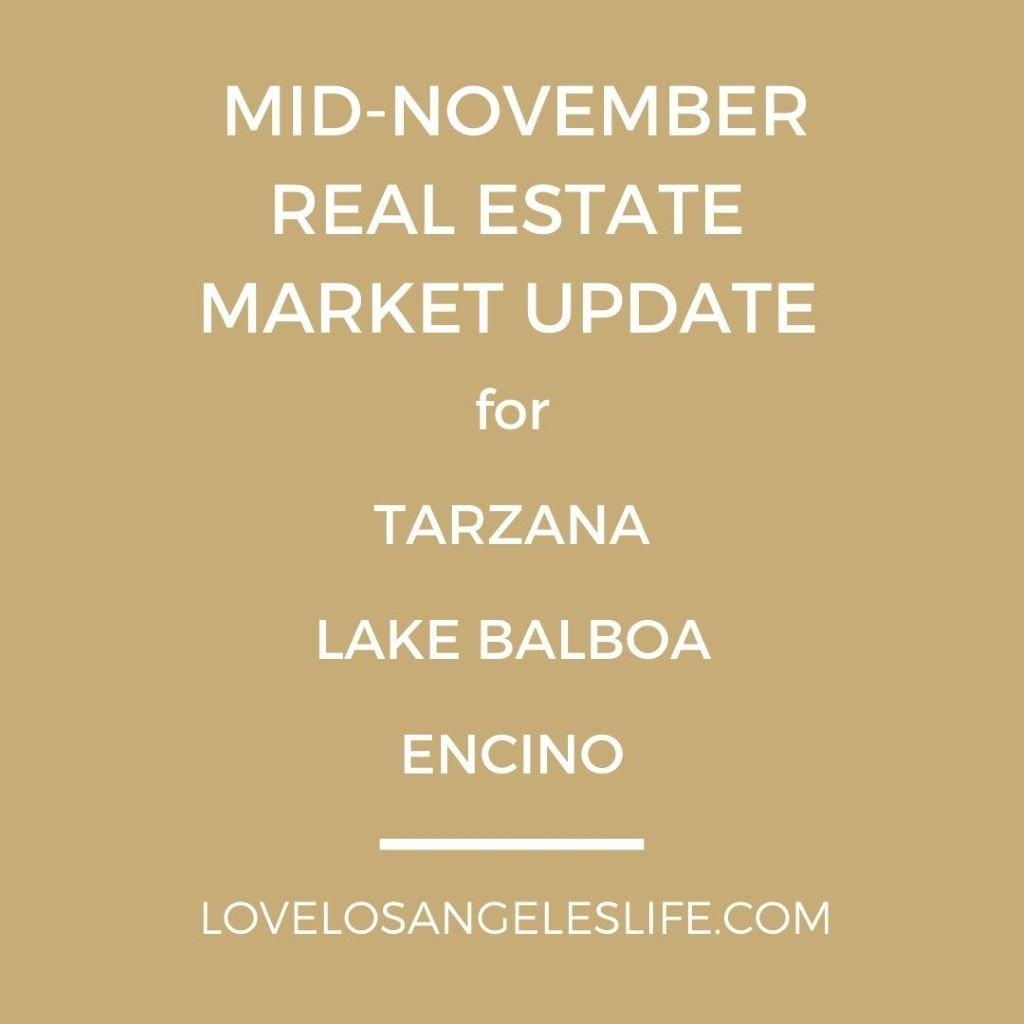 Mid Nov 2020 Real Estate Market Update Graphic